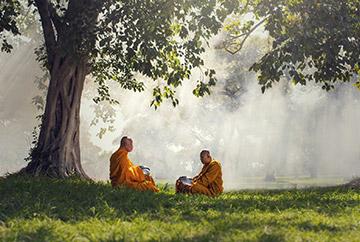 zwei Mönche sitzen unter Bäumen
